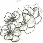 Sketchbook71213b